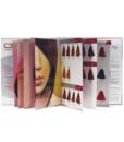 Cartella Colore raccoglitore personalizzabile 9 pagine 83 ciocche