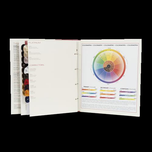 Cartella colore raccoglitore personalizzabile 10 pagine 85 ciocche a goccia