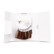 Cartella colore ad anello in confezione personalizzata