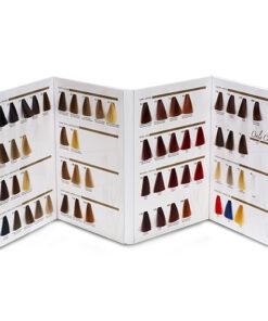 Mini Cartella Colore 4 ante 61 ciocche