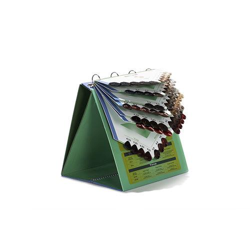 Cartella Colore raccoglitore 68 ciocche