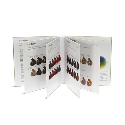 Cartella Colore Premium 74 ciocche