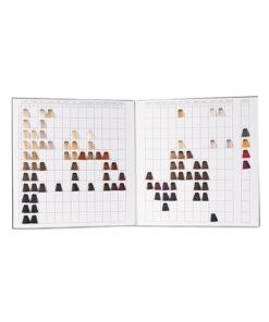 Cartella colore per parrucchieri 2 ante 87 ciocche a spazzolino