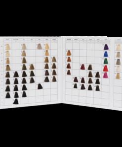 Cartella colore per parrucchieri 2 ante 62 ciocche a spazzolino